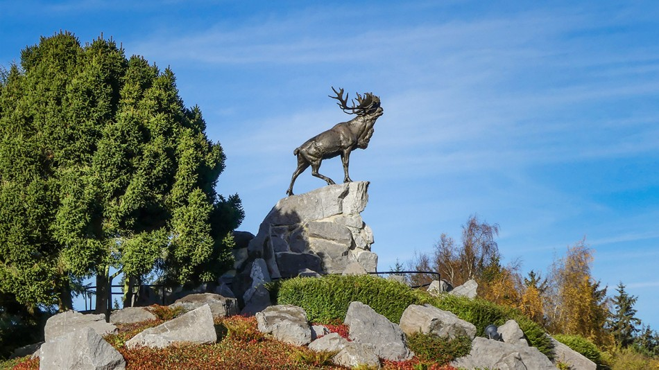 Beaumont Hamel Newfoundland Memorial