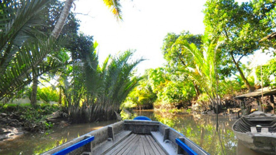 Mangrove reserve boat tour