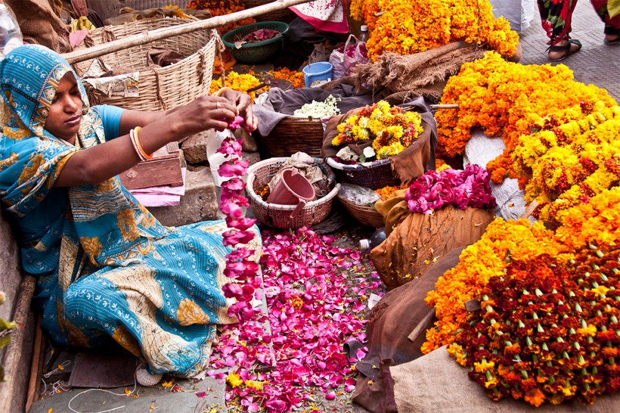 Jaipur flower merchant